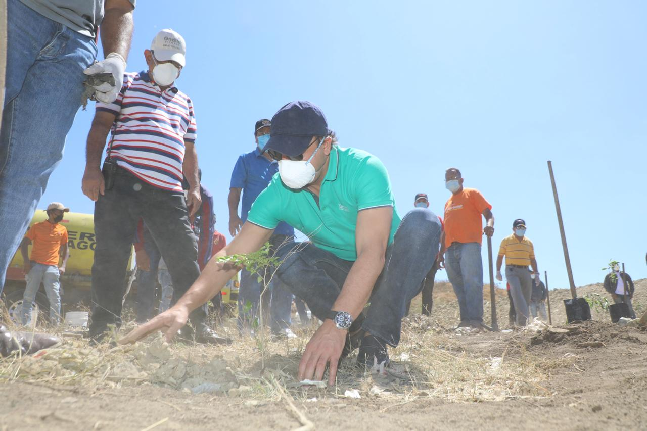 Alcalde Abel Martínez encabeza exitosa jornada de siembra en zona recuperación Vertedero Rafey